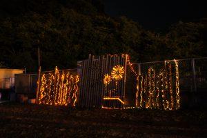 R01竹灯籠